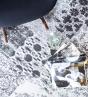 Rugsman | Renaissance Roman Silver Avila | Tapijt | Online tapijten